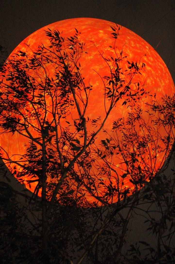 Autumn Moon S Chance Encounter Food Wara
