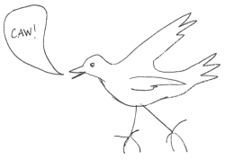 Birdsketch by Rebecca Heiss (All Rights Reserved)