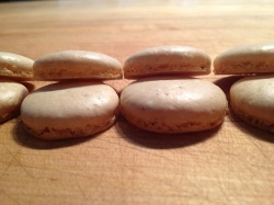 Macaron Foot (Photo Credit: Ben Witten CC BY-NC-SA)