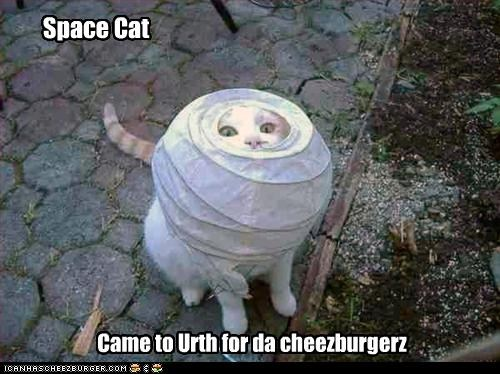 spacecat1