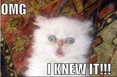 lolcat-omg-i-knew-it