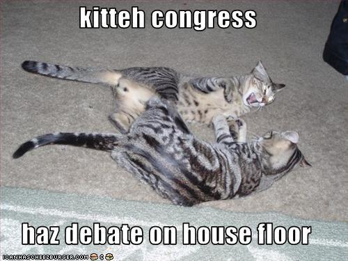 congresskittiees