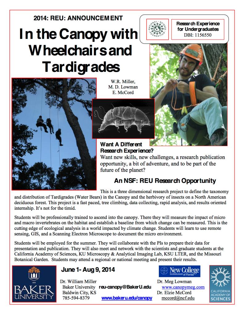 REU-Canopy-InfoSheet2014-1 (1)