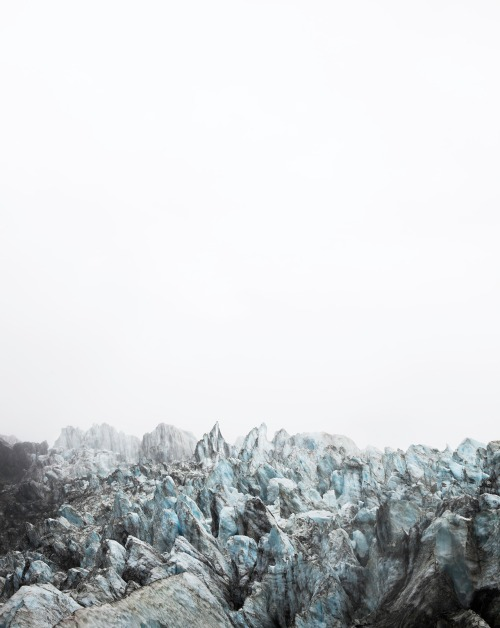 Fox, New Zealand, from Caleb Cain Marcus,  A Portrait of Ice