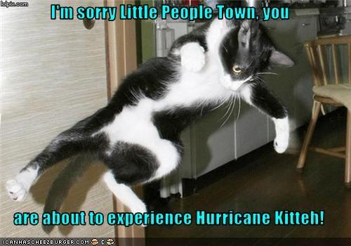hurricanekitteh