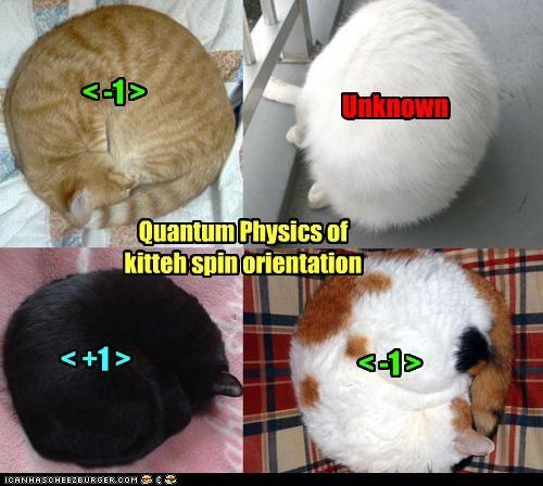quantumkitteh