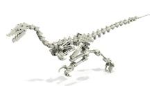 """Velociraptor"" by Bangooh (CC BY-NC-SA 2.0)"