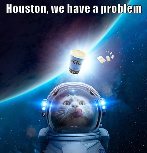 Science Caturday: Coffee Cats in Spaaaaace | The Finch and Pea
