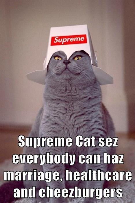 supremecat1