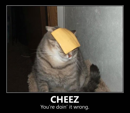 cheez-youre-doin-it-wrong
